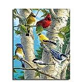 Leezeshaw Peinture à l'huile de Bricolage, Peinture par numéro Kits Décoration Murale Pic Cadeau de Valeur–Superbe Colroful Oiseaux 40,6x 50,8cm Farmeless
