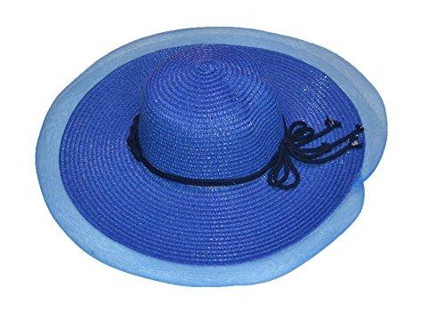 Pisco 'tendance femmes été plage paille Sun chapeaux/chapeaux (5 couleurs) bleu