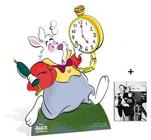 Fan Pack - White Rabbit von Alice im Wunderland Disney Lebensgrosse Pappfiguren / Stehplatzinhaber / Aufsteller - Enthält 8X10 (25X20Cm) starfoto
