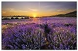Wallario Herdabdeckplatte/Spritzschutz aus Glas, 2-teilig, 80x52cm, für Ceran- und Induktionsherde, Motiv Sonnenuntergang über dem Lavendel