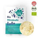 Original Bio Milchkefir Knollen Starterkulturen für unendlich viel Kefir mit Anleitung von Fairment ® für 330ml Kefir täglich
