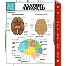 Anatomy Advanced (English Edition)