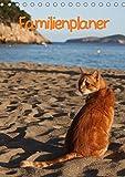 Familienplaner Katzen (Tischkalender 2018 DIN A5 hoch): Stubentiger und Streuner (Familienplaner, 14 Seiten ) (CALVENDO Tiere) [Kalender] [Apr 01, 2017] Lindert-Rottke, Antje