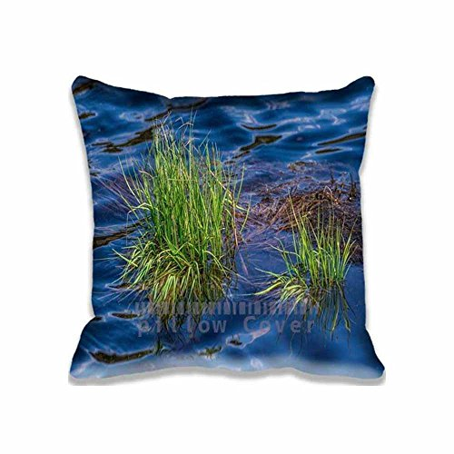 Grass in Lake Square Pattern Design Home Decorative Pillow Cases Cover For Sofa Pillow 18x18 inch(2 - Grass Lake