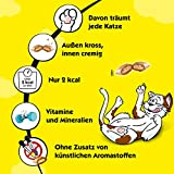 Dreamies Katzensnacks Pute, 6 Packungen (6 x 60 g) - 5