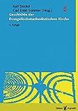 Die Geschichte der Evangelisch-methodistischen Kirche: Weg, Wesen und Auftrag des Methodismus unter besonderer Berücksichtigung der deutschsprachigen Länder Europas