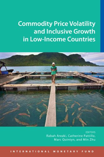 Commodity Price Volatility and Inclusive Growth in Low-Income Countries (English Edition)