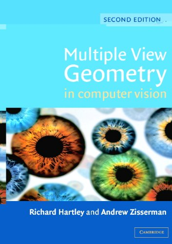 Multiple View Geometry in Computer Vision (English Edition)