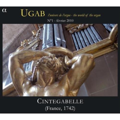 Enregistrements représentatifs de certains orgues à jolis tuyaux 51NvBGVoEiL._SS500