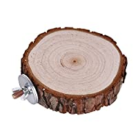 Bird Cage Accessories Pet Round Wooden Coin Jumping Platform Chew Toy for Parrot Parakeet Budgie Cockatiel Squirrel Hamster Totoro