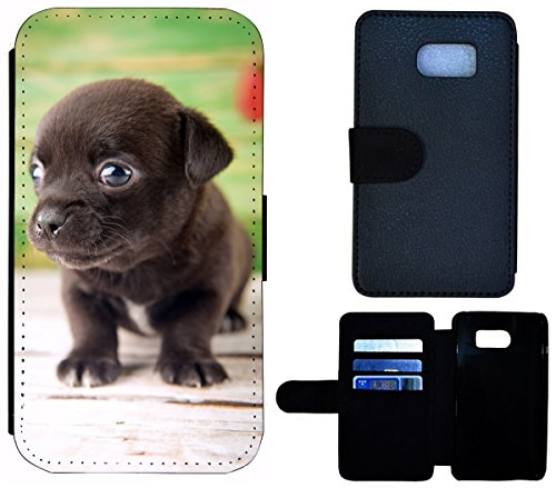 Flip Cover Schutz Hülle Handy Tasche Etui Case für (Apple iPhone 6 / 6s, 1605 Französische Bulldogge Welpe hund) 1604 Chihuahua Welpe Hund Dunkelbraun