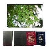 PU Pass Passetui Halter Hülle Schutz // M00157107 Ahorn-grüne Blatt-Makro Natur Pflanze // Universal passport leather cover