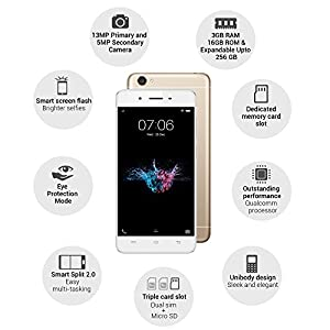 Vivo Y55s (Crown Gold) with Offers