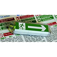 Hoyles EMA Exit Way Marker Unit Complete with Battery, Clear - ukpricecomparsion.eu