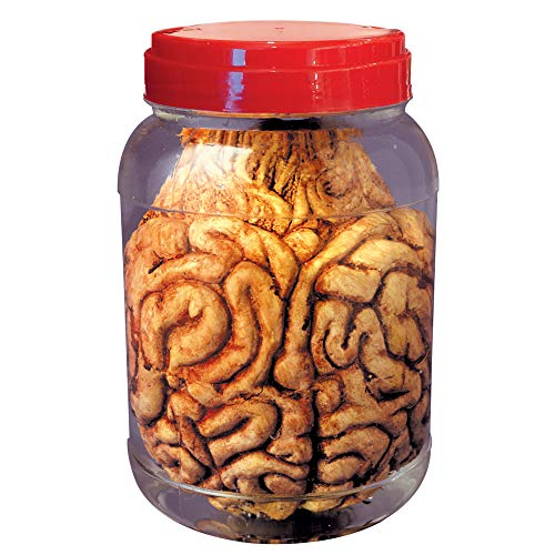 efäß mit Gehirn, Unisex- Erwachsene, Mehrfarbig ()