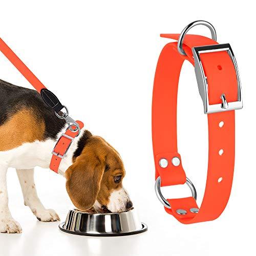 Sunix Hundehalsband Wasserdichtes Set mit Passender Leine, PVC Halsband mit Leine, Verstellbares Halsband für Kleine, Mittelgroße und Große Hunde,Robustes Lauftraining Hundehalsband