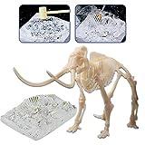 deAO Scheletro Fossile di Mammut Kit di Paleontologia Figura Giocattolo con Ossa Simulate attività Educativa per Bambini (Mammoth)