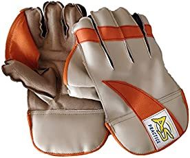 HeadTurners Cricket Wicket Keeping Gloves - Practice