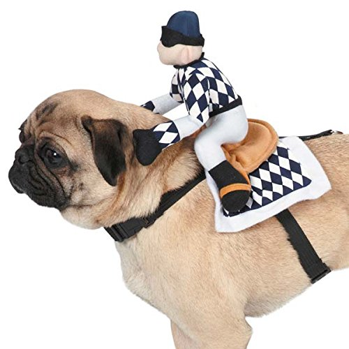 show-jockey-saddle-dog-costume