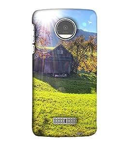 EagleHawk Designer 3D Printed Back Cover for Motorola Moto Z Play - D165 :: Perfect Fit Designer Hard Case