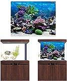 HEEPDD Aquarium Poster, Unterwasser Marine Coral Aquarium Hintergrund Poster Verdicken PVC Adhesive Static Cling Hintergrund Dekorpapier (76 * 30 cm)