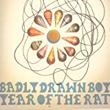 Picture Of Year Of The Rat