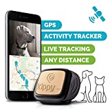 51Nx-gzy-dL._SL160_ Why Use a Pet Tracker?