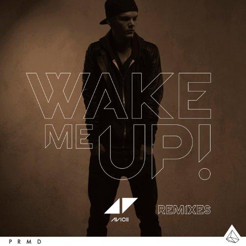 Wake Me Up (Reggae Mix)