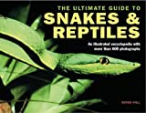 Ultimate Guide to Snakes and Reptiles