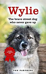 Wylie: The Brave Street Dog Who Never Gave Up by Pen Farthing (2015-02-12)