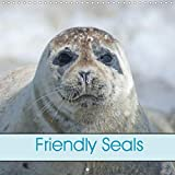 Friendly Seals (Wall Calendar 2020 300 × 300 mm Square): Animal and Sea (Monthly calendar, 14 pages )