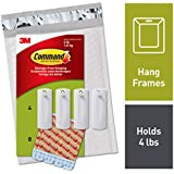 Command Sawtooth Picture Hanger, White