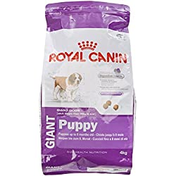 Royal Canin - Royal Canin Giant Puppy Contenances : 4 kg