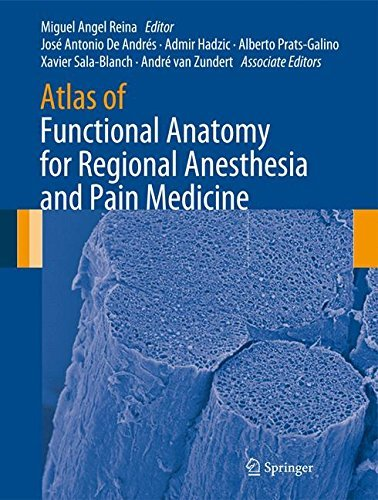 Atlas of Functional Anatomy for Regional Anesthesia and Pain Medicine: Human Structure, Ultrastructure and 3D Reconstruction Images (2015-01-20)