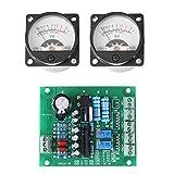 2Pcs VU Instrumententafel Meter mit Warmem Hintergrundlicht und Audiopegel-Ampere mit Fahrer