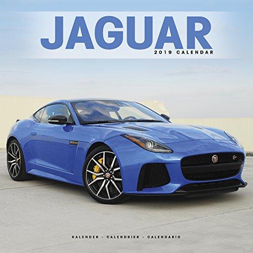 Jaguar 2019 (Wall-Kalender)