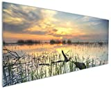 Wallario Küchenrückwand aus Glas, in Premium Qualität, Motiv: Schilf am Abend - Sonnenuntergang über der Seelandschaft | Spritzschutz | abwischbar | Pflegeleicht
