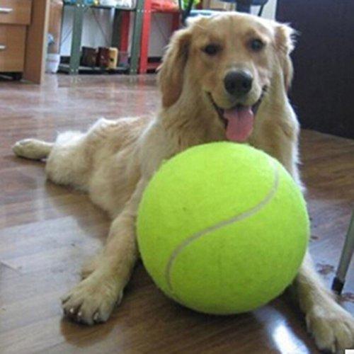 LnLyin Große Tennisball für Haustiere Outdoor Sport 24cm