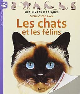 """Afficher """"Cache-cache avec les chats et les felins"""""""