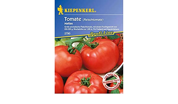 Tomaten Fleischtomaten Aurea F1 Typ Coeur de Boeuf