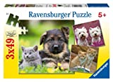 Ravensburger Puzzles Dogs and Cats, Multi Color (3 x 49 Pieces)