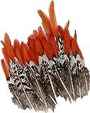 ERGEOB Hähnchen Federn mit Rote Spitze 20 stuck 5-10cm