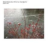 VINYL - Rodenkirchen Norbert/Robbie Le-Opalescence (1 LP)