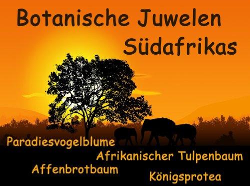Botanische Juwelen Südafrika