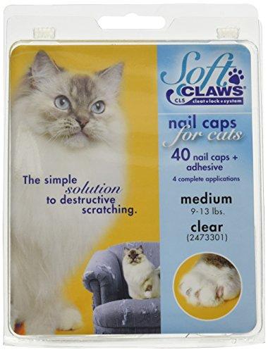 SOFTCLAWS® Krallenschutzes Katzenmittelgroß Durchsichtig