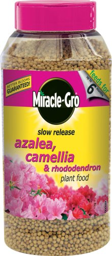 miracle-gro-azalea-camellia-and-rhododendron-continuous-release-plant-food-shaker-jar-1-kg