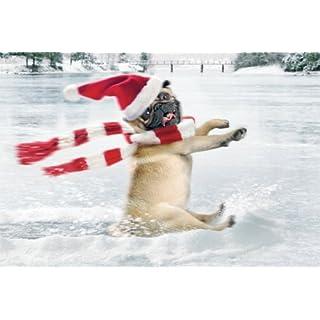 AVANTI Weihnachtskarte Humorkarte frohe Weihnachten mit Hund Mops 22-8311