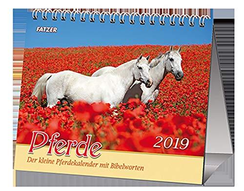Pferde 2019 (Tischkalender): Der kleine Pferdekalender mit Bibelworten