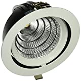 Digilamp 57-X5004D-50W-Lampe LED downlight WH4K orientable Blanc