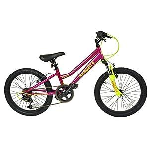 51NzQWM5DoL. SS300  - Muddyfox Girl Quest Hardtail 6 Speed Youth Bike, Purple/Yellow, 20 Inch